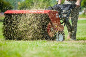 Fall dethatching -- when to stop mowing