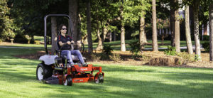 Rethink Your Landscaping to Make Mowing Easier