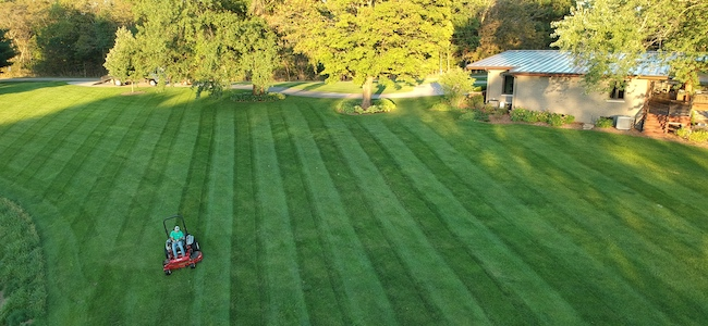 Stripes help make a lawn look professional