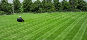 Lawn Striping: How to Mow Stripes and Patterns